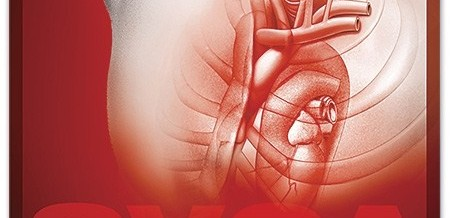 Curso Soporte Vital Cardiovascular Avanzado SEMES AHA- H.U.La Paz